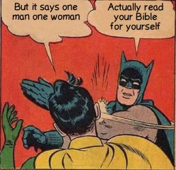 Batman Slapping Robin 2 14092018094428